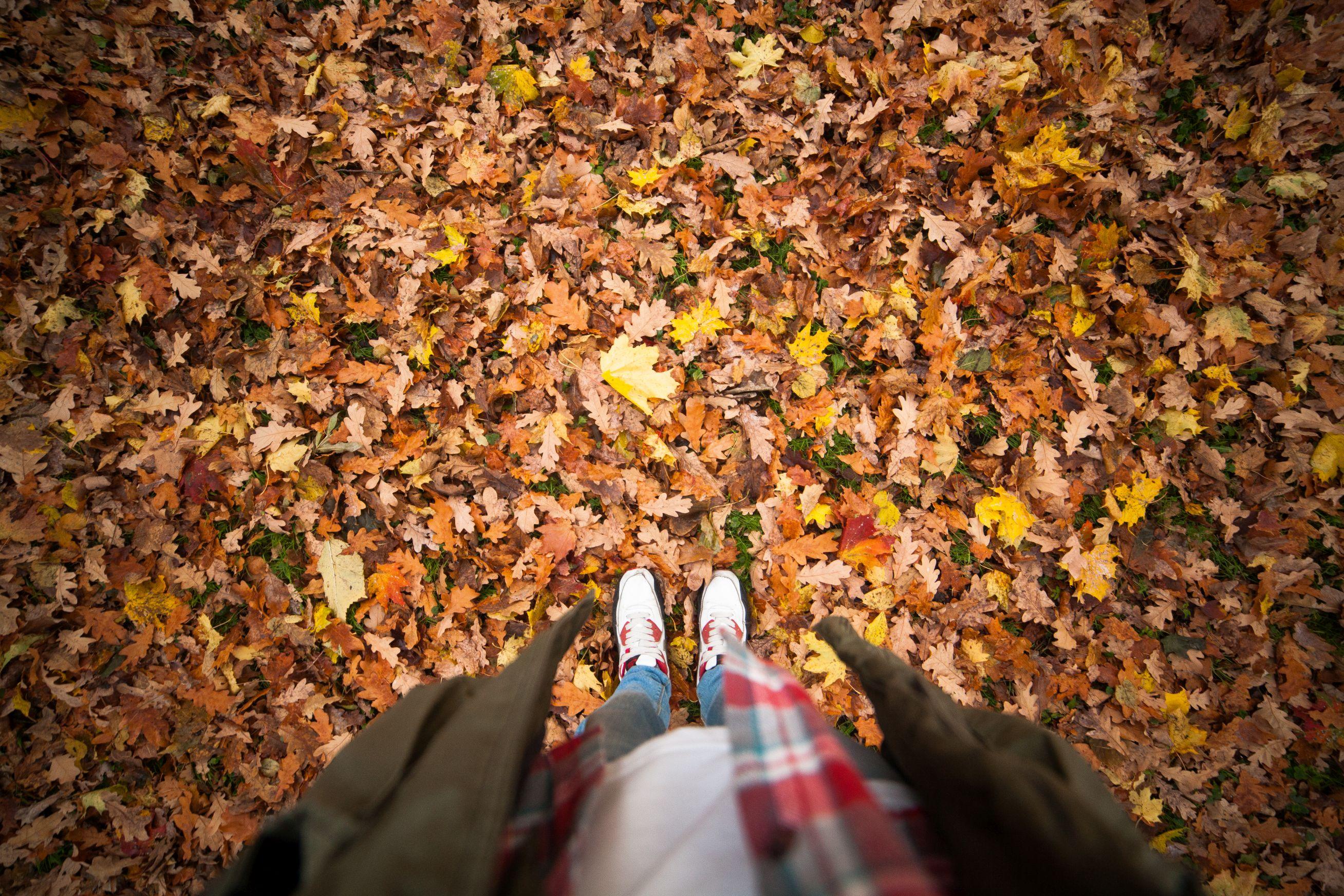 Sonbaharda Yapılacak Keyifli Aktiviteler