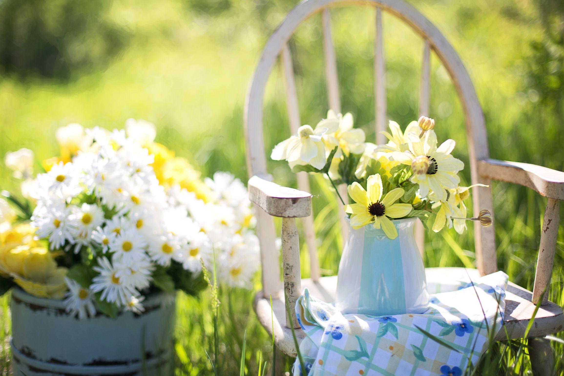 Bahçe Düzenleme Önerileri